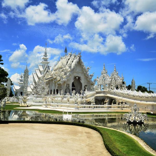 Chiang mai la religiosa rosa del norte de tailandia - Vivero la rosa del norte ...