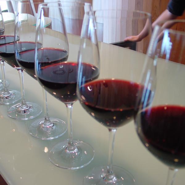 Nueve orientaciones básicas para combinar bien vinos y comida