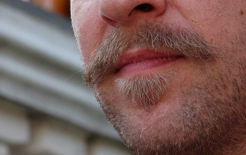 800px-beards.jpg