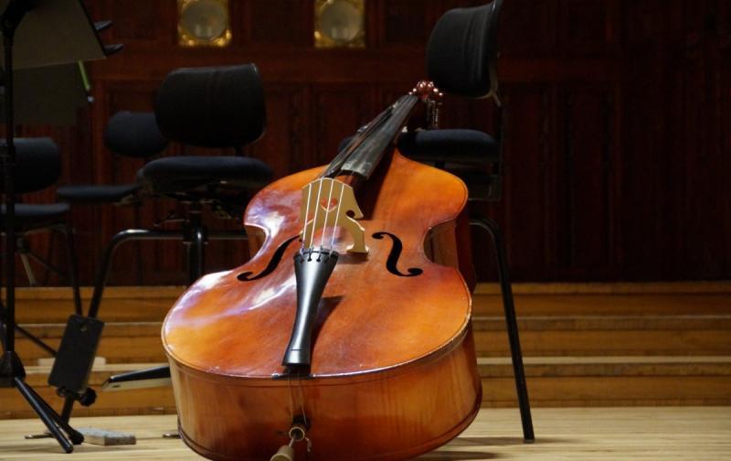 bass_double_bass_musical_instrument_string_concert_classical_music-614470.jpg