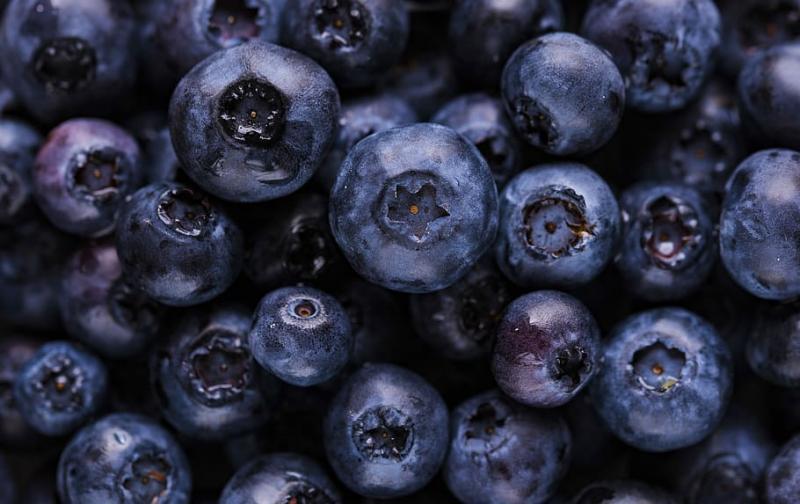 blueberry-blueberries-fruit-berry.jpg