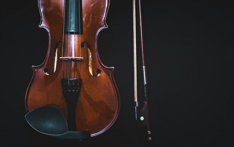 bowed-instrument-1853324_1280.jpg
