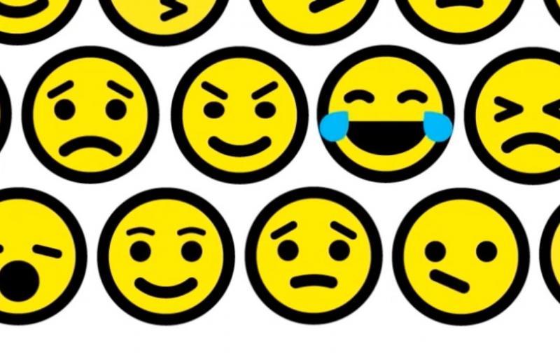 Durante su euforia, la persona bipolar no es responsable de sus extravaganzas