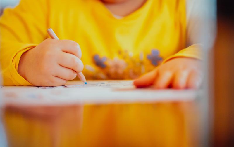 child-drawing-girl-2056397.jpg