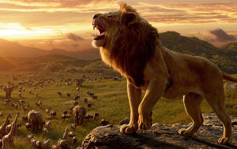 el-rey-leon-2.jpg
