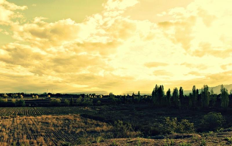 landscape-60879_6401.jpg