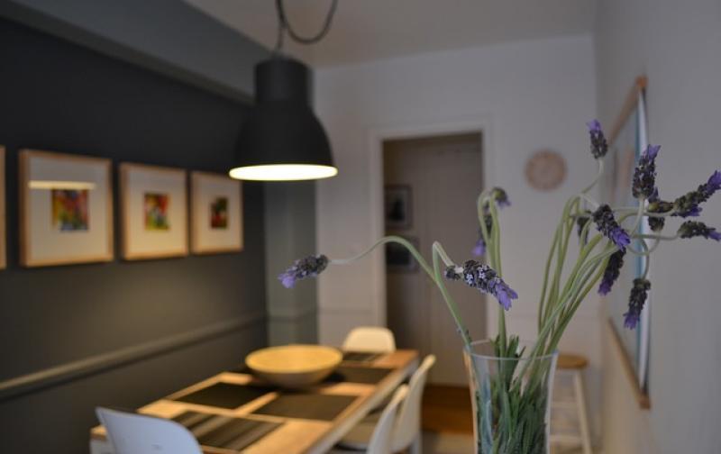 lavender-785968_640.jpg