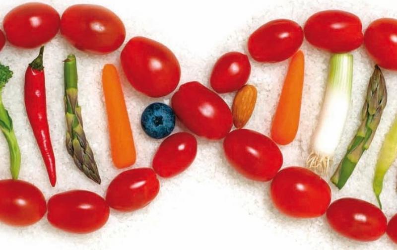 comida y genes
