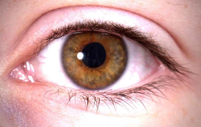 ojos111.jpg