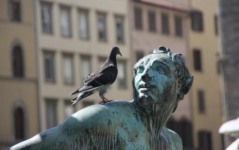 statue-185435_1280.jpg