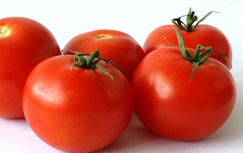 tomates12.jpg