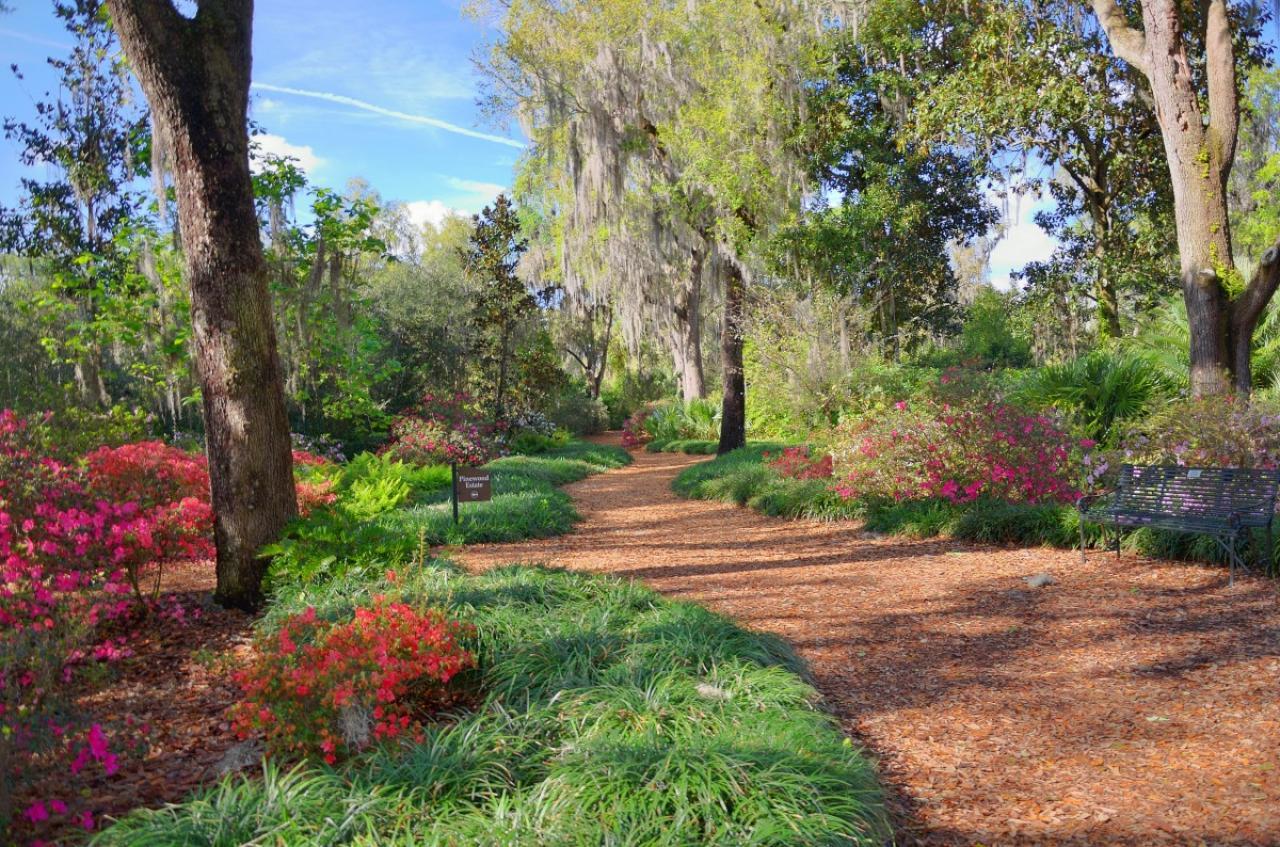 Bok Tower Gardens: El secreto de Florida que debes conocer