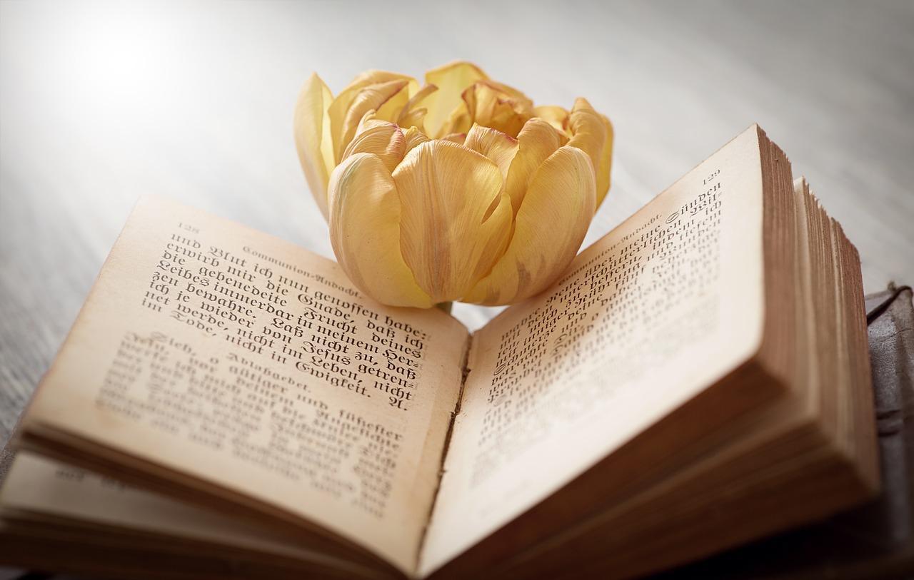 Incunables libros impresos en 1500 son los m s buscados en las subastas lifestyle de - Libros antiguos mas buscados ...