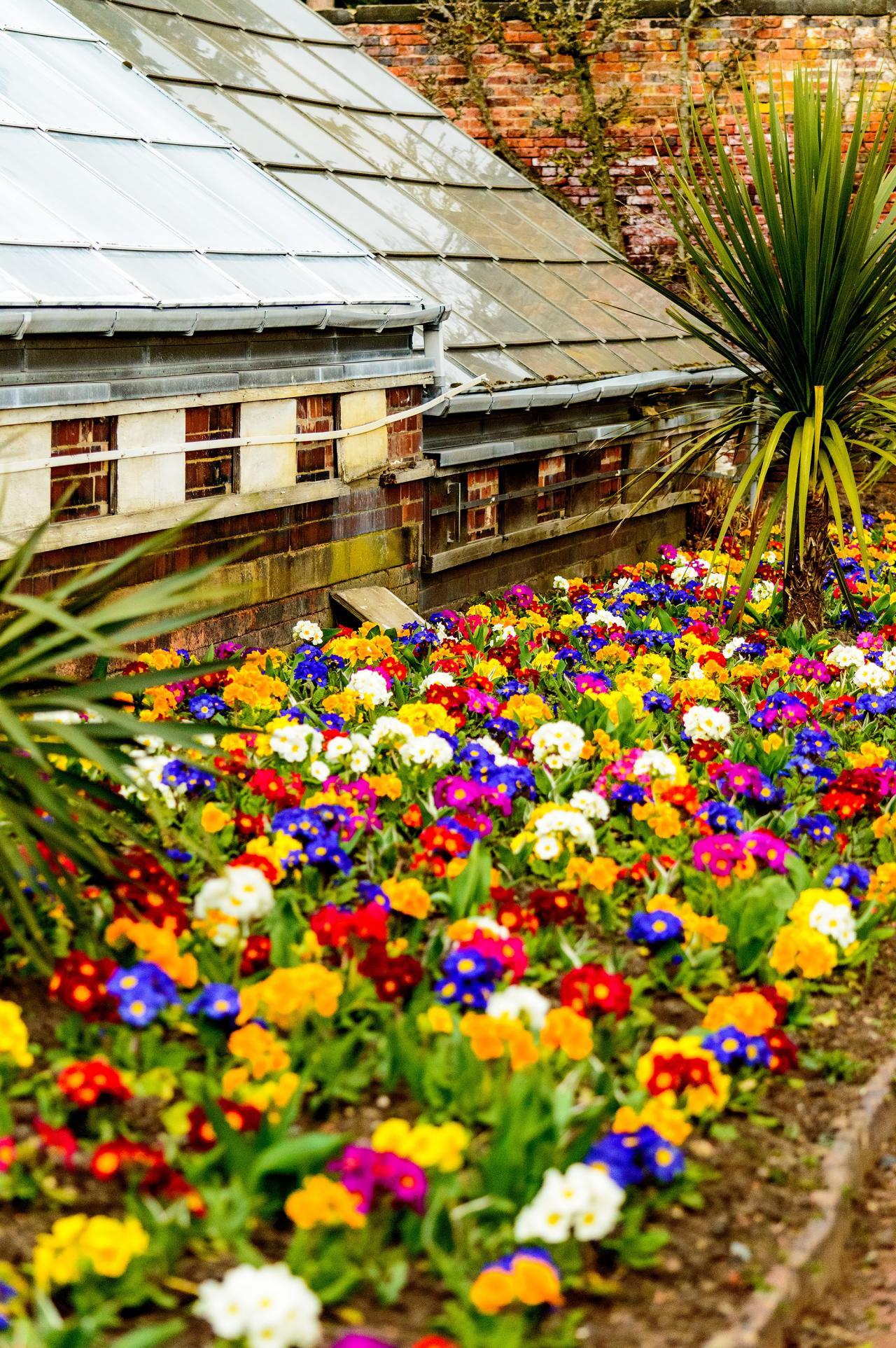 Dise os atractivos para jardines peque os lifestyle de am ricaeconom a artes dise o estilo - Plantas de jardin fotos ...